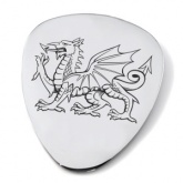 Welsh Dragon Guitar Plectrum/Pick (can be personalised)