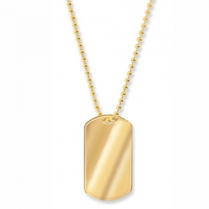 9ct Yellow Gold Dog Tag with Chain (can be personalised)
