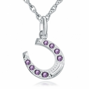 Horseshoe Necklace, Amethyst & Sterling Silver